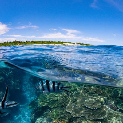 水納島 半水面