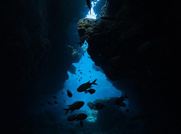 瀬底島 ラビリンス
